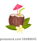 Cocktail in a brown coconut. Vector illustration on a white background. 56988645