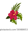 Red tropical flower. Vector illustration on a white background. 56988653
