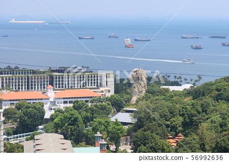 聖淘沙島和新加坡纜車的魚尾獅 56992636