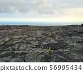 Lava ground 56995434