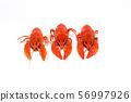 three boiled crayfish on a 56997926