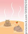Capybara Onsen 56999250