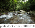 A mountain stream in the Okuju Valley in the green 57003018