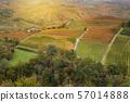 Landscape of Barolo wine region 57014888