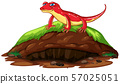 Nature scene with red gecko on hill 57025051