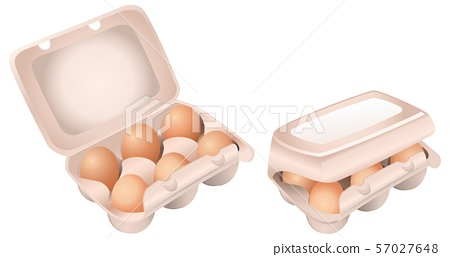Set of Chicken Eggs in Boxes on White Background 57027648