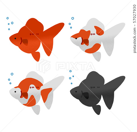 Cute Goldfish 4 Pattern Set Stock Illustration 57027930