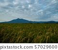 Mt. Tsukuba 57029600