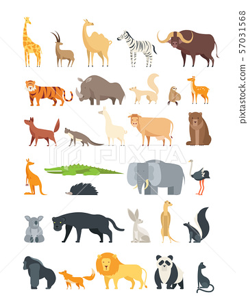 Flat african, jungle and forest animals. Cute... - Stock ...