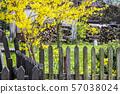 Springtime in garden, Cicmany, Slovakia 57038024