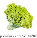 fresh romanesco broccoli isolated on white 57038288