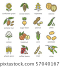 Agricultural commodities of the plant origin icons set in flat style design with editable stroke 57040167