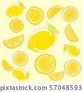손으로 그린 레몬 57048593