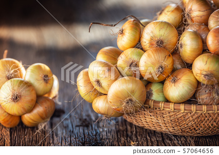 bundle of freely lying dried onion on a wooden 57064656
