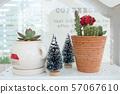 Close up decorated cactus pot on white shelf 57067610