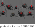 Seamless pattern with black widow spiders. 57068961