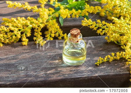 A bottle of goldenrod essential oil  57072808