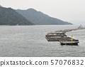 牡蛎养殖,牡蛎养殖鲑鱼,海产品业务,幼苗约束,主要下垂栽培,收获 57076832