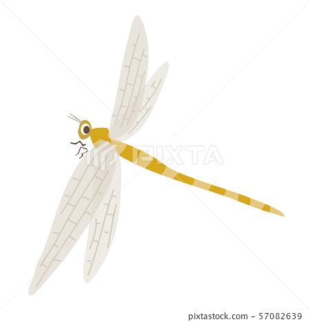 蜻蜓 57082639