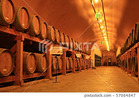 와인동굴,와인 57084847