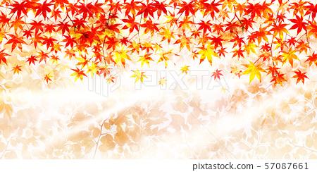 秋葉楓葉背景 57087661