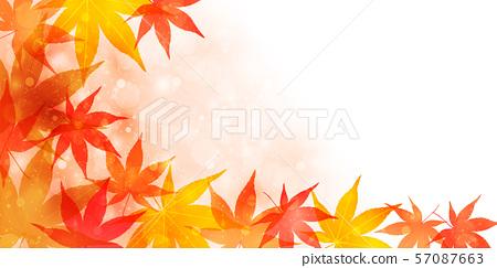 秋葉楓葉背景 57087663