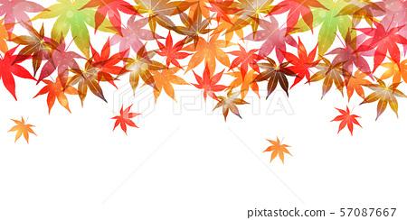 秋葉楓葉背景 57087667
