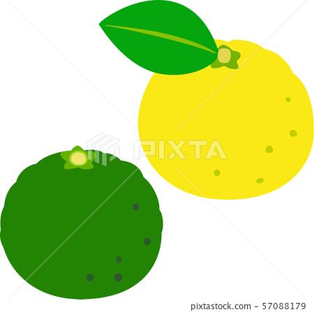 黃色椰子和綠色椰子 57088179
