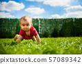 Child, Toddler, boy 57089342