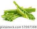 Fresh celery stalks and leaves isolated 57097368