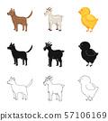 Vector design of breeding and kitchen symbol. Collection of breeding and organic vector icon for 57106169