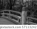 Meji Shrine Bridge 57113242