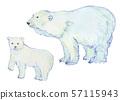 백곰의 부모 수채화 57115943