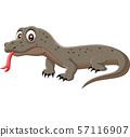 Cartoon komodo dragon isolated on white background 57116907