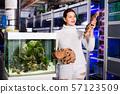 Girl in aquarium store choosing brown petrified wood 57123509