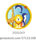 Zoology school discipline study about animals and 57132108