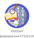 Anatomy of human, school classes, discipline at 57132110
