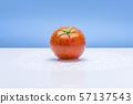 토마토,채소,야채,과일 57137543