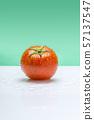 토마토,채소,야채,과일 57137547