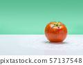 토마토,채소,야채,과일 57137548