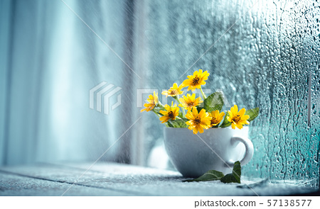 Flowers in a cup on the window on a rainy day 57138577