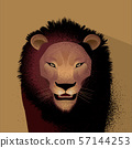 獅子 57144253