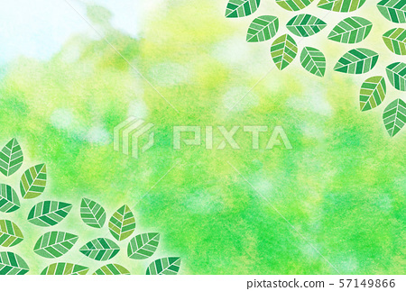 신록 잎 수채화 57149866