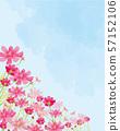 Aki Sakura: Aki Sakura Cosmos Festival in full bloom, watercolor petals 57152106
