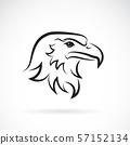 Vector of an eagle head design. Animal. Bird. 57152134