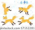 달리는 여우 · 사냥하는 여우 일러스트 세트 57152281