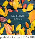 Autum Sale. Discount banner or flyer design template with vibrant autumn leaves and copy space 57157300