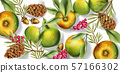 Autumn harvest pattern Vector watercolor. Fall 57166302