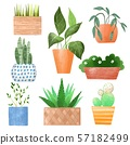 Potted plants. Cartoon set 57182499