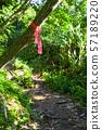 등산로 (올바른 길을 보여주는 핑크 리본) 57189220